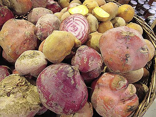 Slow Food Market Bern